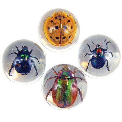 Real Bugs Marble Set